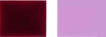 Pigment-voldelig-19-Color